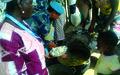 Volunteers in Action across Bomi County